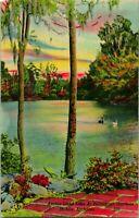 Vintage Linen Postcard - Mirror Lake Bellingrath Gardens River Mobile Alabama AL
