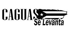 Puerto Rico (SE LEVANTA ..Caguas and other Customize names) Sticker