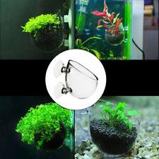 Mini Wall Mount Aquarium Fish Tank Aquatics Plant Crystal Glass Cup Pot Holder