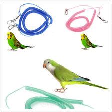 Kits De Correa Loro Pájaro Cuerda Entrenamiento Para Caiques Color Al Azar
