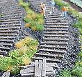 Bahnschwelle Holz 28224 Von Juweela