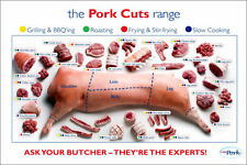"Pig Pork Cuts Butcher Poster Store Print 24 x 16"""