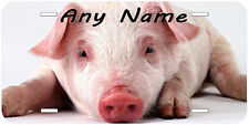 Cute Pig Aluminum Any Name Personalized Novelty Auto License Plate A02