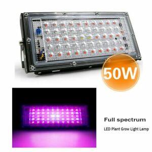 Refugium 50W LED Grow Light - Full spectrum - Cheato Caulerpa macroalgae Red -UK