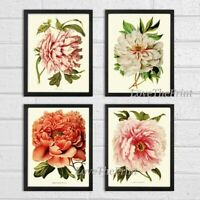 Unframed Botanical Print Wall Art Set of 4 Antique Peony Flower Home Room Decor