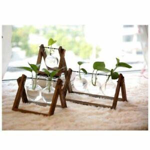 Glass Flower Pot Planter Bonsai Pot Garden Home Office Decor Wooden Frame Stand