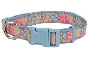 Douglas Paquette BUTTERFLIES LIGHT BLUE Nylon & Ribbon Adjustable Dog Toy Collar