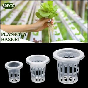 Hydroponic Colonization Mesh Pot Net Cup Basket Nursery Plant Soilless Planting