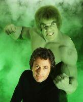 The Incredible Hulk Bill Bixby Lou Ferigno Color 8x10 Glossy Photo