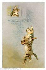 HELENA MAGUIRE . chats. Mandoline . Mandolin. Cat.  Katze. Gato . 猫 . 貓