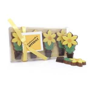 Solid Milk Chocolate Daffodils Gift Box Flowers Spring William Wordsworth 4 Pack