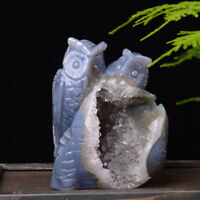 Natural Geode Agate Crystal Quartz Manual Carving Owl Healing Decoration 2.25lb