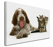 More details for italian spinone dog and kittens x-large 30