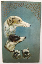 Dogs Gold Embossed Postcard Printed in Germany by A.T.S.B Postmarked 1911