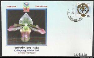 Cypripedium venustum Kalimpong special cvr Orchids India Flora Orchidées Flowers