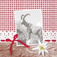Serviette Alma aus Tissue 33 x 33 cm, 100 Stück - Edelweiss rot-weiss