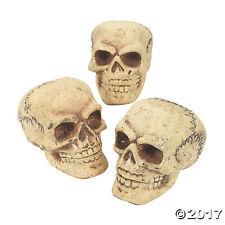 3 Pack of Foam Halloween Skulls - Pirate Skeleton Party Decor, Shrunken Head