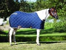 Big D Nylon Stable Horse Sheet Blanket Royal Blue Black 76 78 80 420D Show NEW