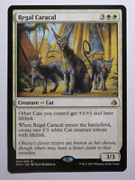 Regal Caracal    MTG Magic VO English