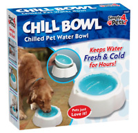 Pet Chilled Drinking Bowl Chill Fresh Cold Water Pet Cat & Dog Bowl