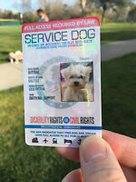 HOLOGRAPHIC PVC SERVICE DOG ID CARD ASSISTANCE ANIMAL ID BADGE TAG FOR VEST ADA