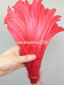 Wholesale! 10/50/100 pcs beautiful rooster tail feathers 10-18 inches/25-45cm