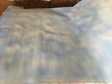 """photography backdrop light blue sky canvas 96"""" x 60"""""""