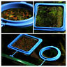 Aquarium Feed Ring Fish Tank Station Floating Food Tary Square/Circle Feeder lj