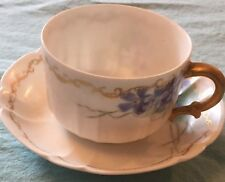 Haviland & Co Limoges Hand Painted Tea Cup And Saucer Circa 1900