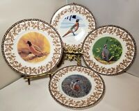 "National Wildlife Federation 4 SALAD PLATES Wild Birds 8"" oak leaf acorn rim"