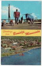 Bemidji MN Aerial View and Paul Bunyan and Babe Statues postcard