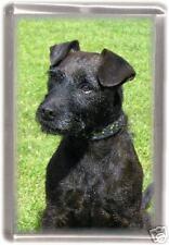 Patterdale Terrier  Fridge Magnet No 4 by Starprint