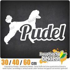 Poodle with Name Caniche Dog chf0750 in 3 Größen JDM Rear window Sticker