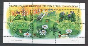Moldova 2008 Flowers 3 MNH stamps Sheet