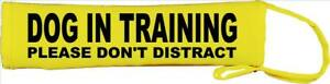 Dog In Training Please don't distract Neon yellow lead slip space need neo163