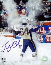 Tedy Bruschi New England Patriots Signed Autographed Snow Play 16x20 Photo