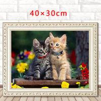 Animal Cat Bowknot Hat Full drill 5D Diamond Painting Art Fashion Decor N6069