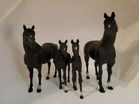 Vintage * Blue Box * Blue Ribbon Ranch  Horse Family!  Mom, Dad & 2 Male Colts
