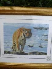 Animals Original Art Prints Stephen Gayford