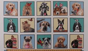 """23.5"""" X 44"""" Panel Quirky Dogs Pets Animals Doggie Drama Cotton Fabric D750.05"""