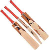 2019 Puma Evospeed 6 Kashmir Willow Junior Cricket Bat Sizes 4 3 2 1