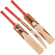 2019 Puma Evospeed 6 Kashmir Willow Junior Cricket Bat Sizes 1 2 3 4