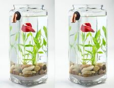 TWO (2) IMPERFECT NoClean Aquariums Self Cleaning Betta Fish Tank Bowl Desktop