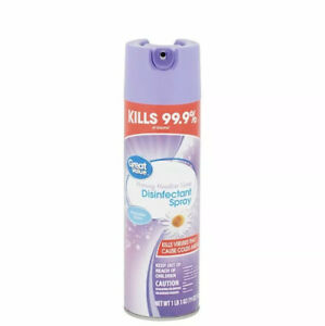 Great Value Disinf All Purpose Spray  19oz (2pack)