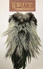 NEW WHITING ROOSTER FLY TYING CAPE SILVER BADGER FREE POST UK