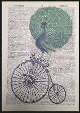 Vintage Peacock Penny Farthing Print Dictionary Page Wall Art Picture Bicycle