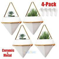 4 Packs Hanging Planter Vase & Geometric Planter Wall Decor Air Plant Container