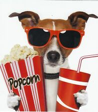 Pliante carte de luxe: Jack russel terrier Chico comme neuf