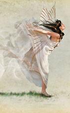 Incorniciato stampa-BIANCO ANGELO DANCING sull' erba verde (foto poster arte gotica