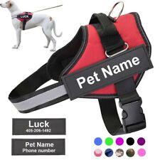 Pettorina per cani, Scritta Nome Personalizzata, Professionale,Gilet Riflettente